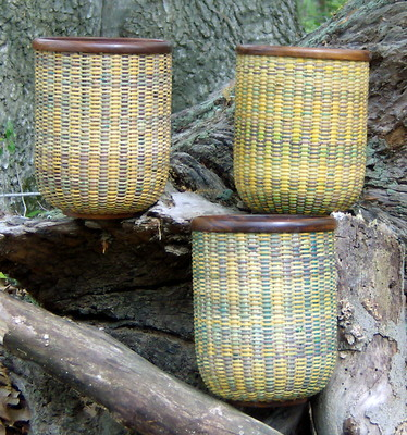 Parrot Baskets Outside View